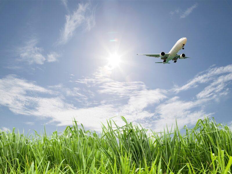 Grass field plane sky clouds Cronos Asia