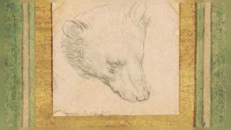 golova medvedya Cronos Asia