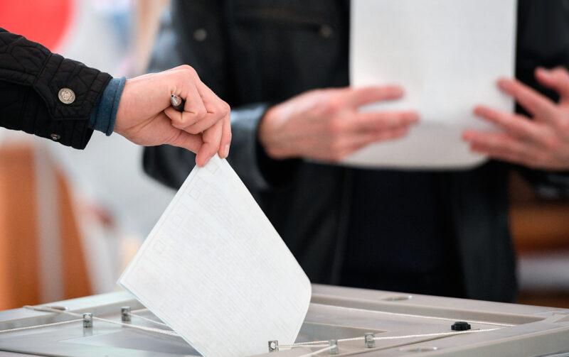 vybory vestikavkaza.ru Cronos Asia